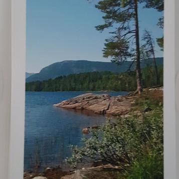 Kortstokk nr 2 Bilde Langesetvatnet somm