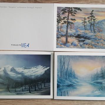 Kortpakke 1 vintermotiv .jpg
