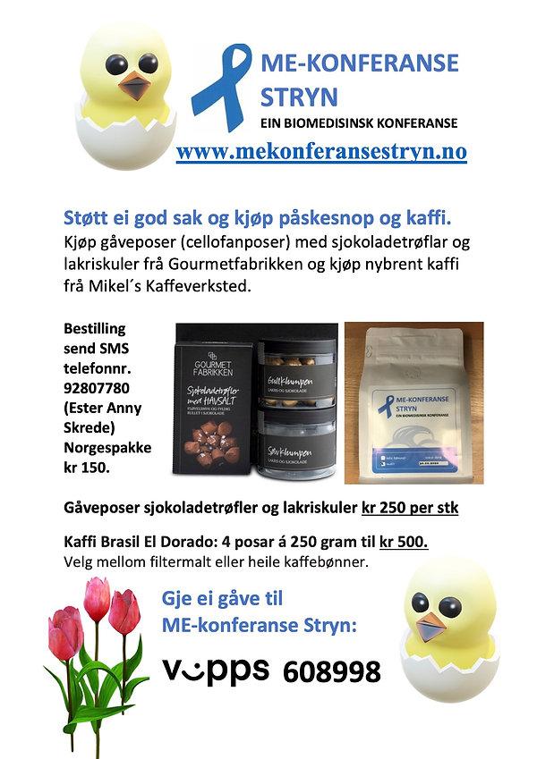 Dugnadsal ME-konferanse Stryn påske.jpg