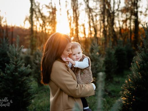 Tree Farm Family Photos | Golden Hour  | F Family