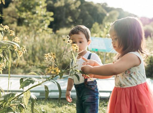 Evan and Evie Turn Two | Pittsburgh Family Photographer | Mini Keepsake Film