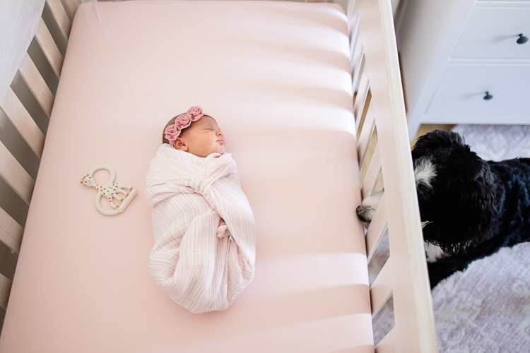 newborn-baby-girl-photos-in-home-daniell