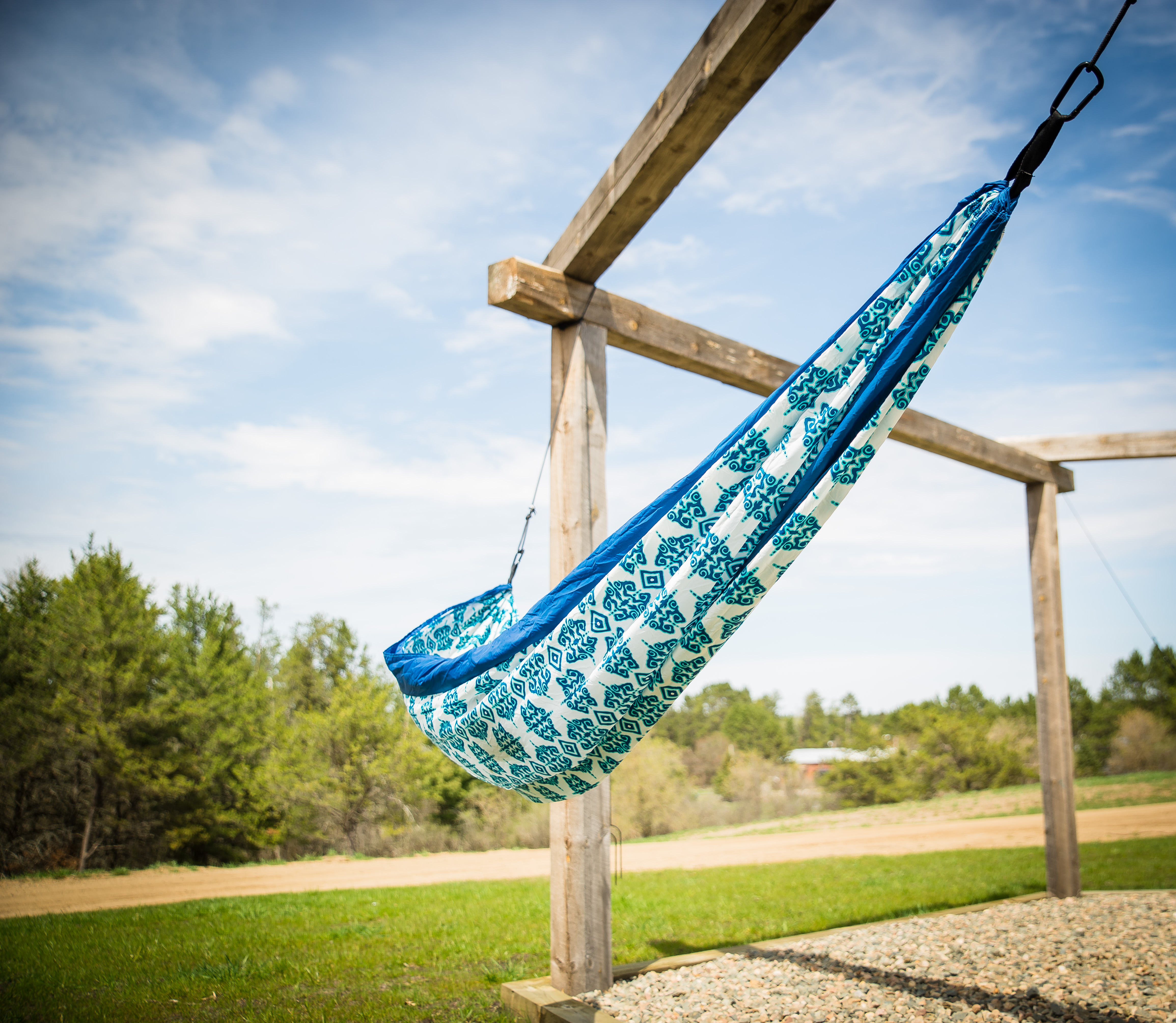 Blue Sky Tree Swing
