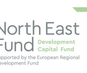 The Pandemic & Me: North East Fund