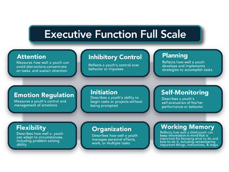 Executive Function without ADHD, possible?