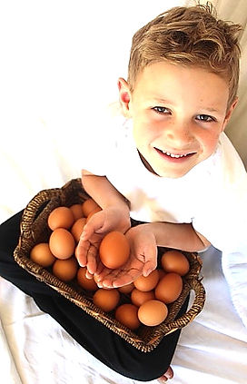 matt and the eggs 1.JPG
