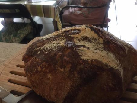 葡萄の自然酵母のパン