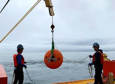 Building an Antarctic Ocean Observing System