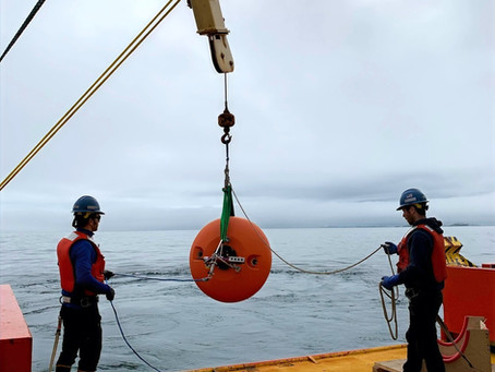 Building an Antarctic Ocean Observing System