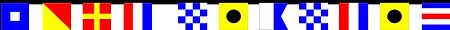 PNI FLAGS 11-25-18 B.png