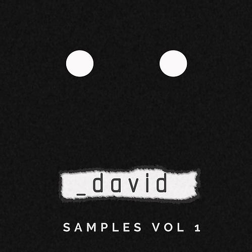 _David - Samples Vol 1 Sample Pack