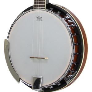 banjo closeup.jpg