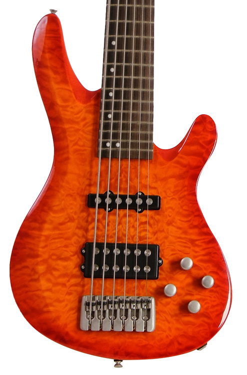300 Series Active 6 String Bass