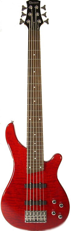 200 Series 6 String Bass