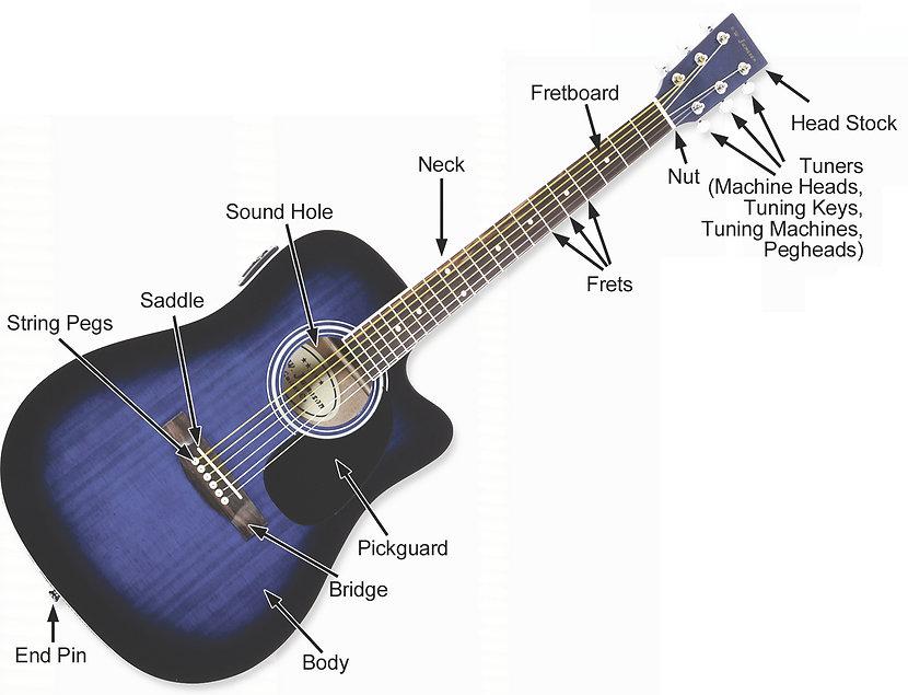 Pars Of An Acoustic Guitar.jpg