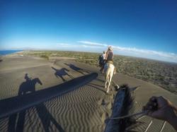 horseride Cactimar