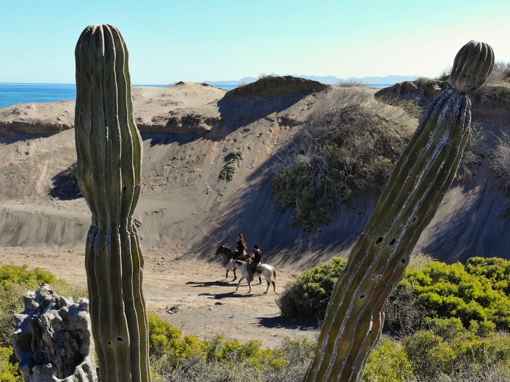 balade à cheval 7km