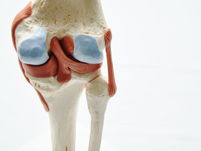 What are MCL Injuries?