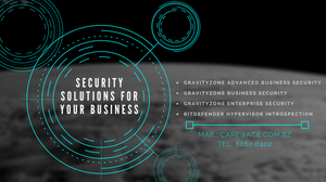 Security Solutions for Companies