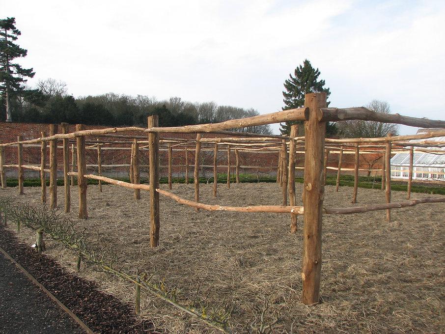 Audley end chestnut fruit cage, fruit cage ideas, chestnut fruit cage, chestnut structures, fruit cage natural, wood fruit cage, woven worlds chestnut fruit cage