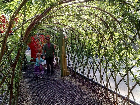 living willow suffolk graham north, living willow tunnels, living willow, willow,  natural garden ideas, garden ideas