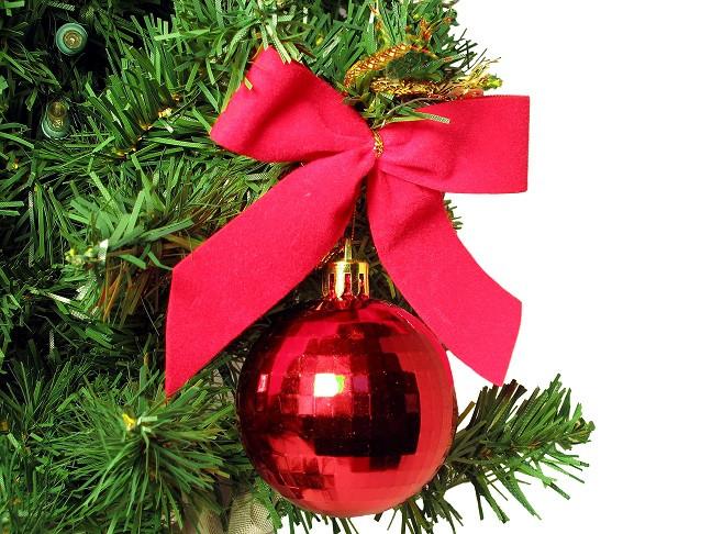 dreamstimefree_254500 - Christmas Ornament on tree.jpg