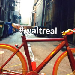 www.waltreal