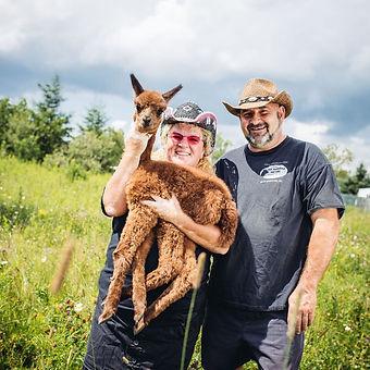 ferme alpaga alpagas lala la la quebec saguenay visite terroir artisanat artisan boutique fourrure laine