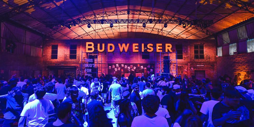 MODAUT 005 // Budweiser Basement