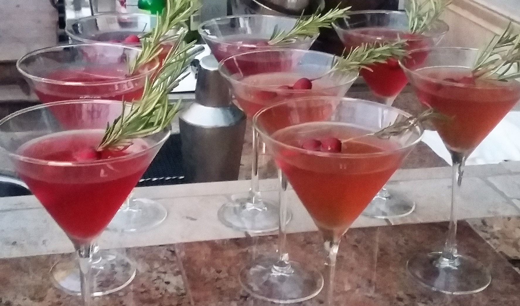 Cranberry Martini II