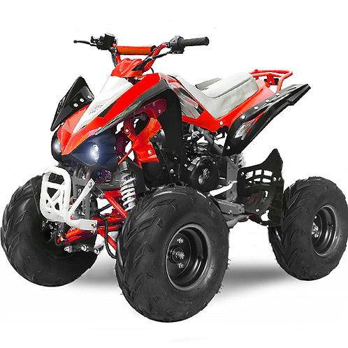 Quad Sport FX 110cc R7