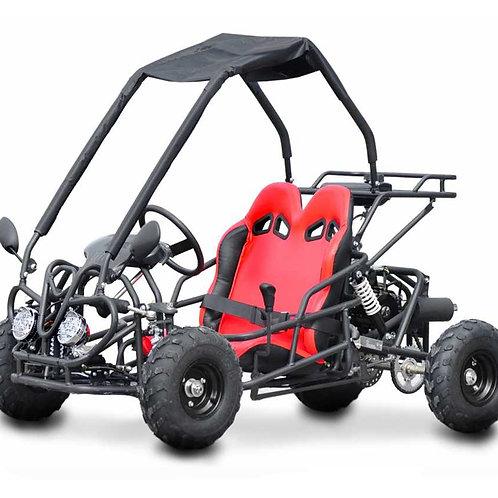 Buggy Kid 110cc