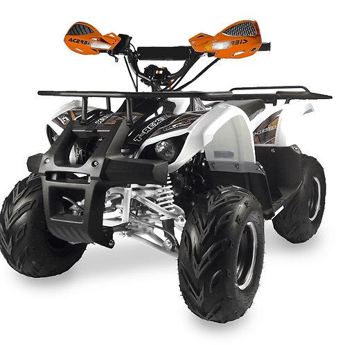 Quad T-Rex 125cc