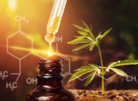 CBD Oil or Hemp Oil - Is There A Difference?