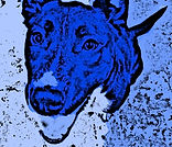 Elliott-HoodPuppy-Blue_Cartoonizer_2.jpg