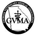 GVMA2.jpg