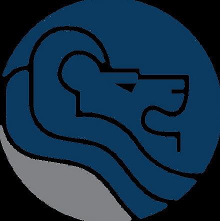 IB Blue Icon.png