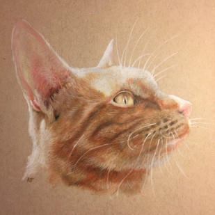 Ginger Tomcat Painting
