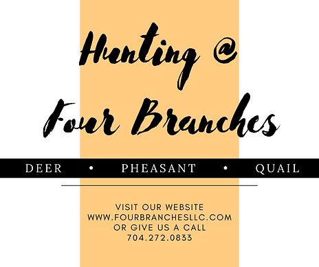 Hunting _ Four Branches 10.8.png