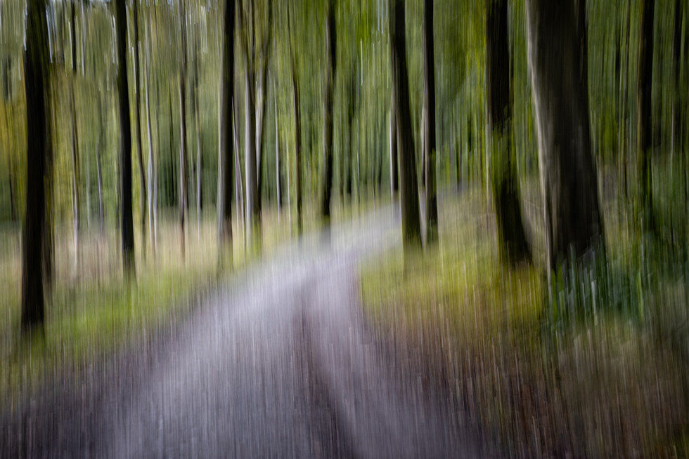 'The Path' by John McCullough (11 marks)