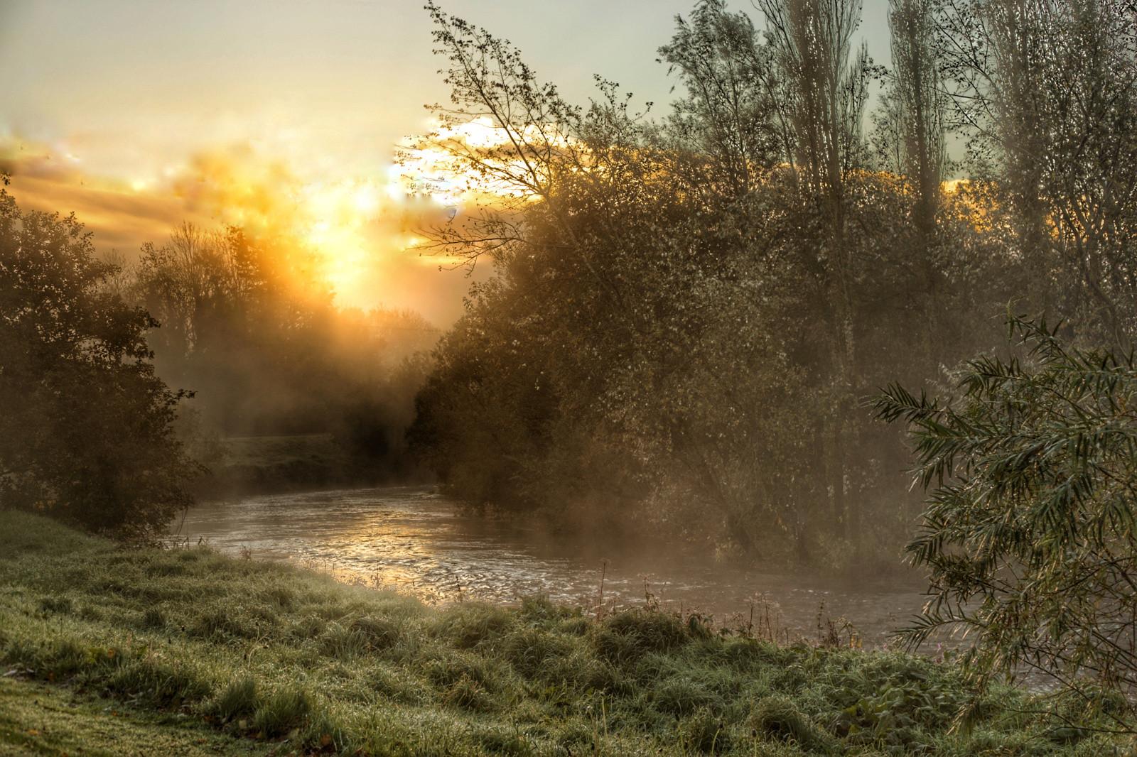 COLOUR - Morning Glory by Gary Cowan (9 marks)