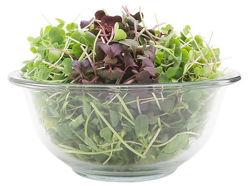 Energy Booster Super Salad