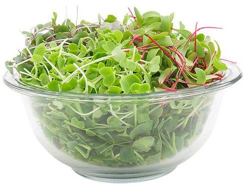 Cleansing Super Salad