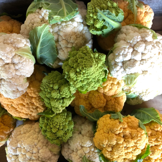 Colorful Cauliflower!