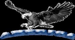AMERICAN EAGLE-21