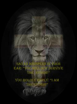 LION-SURVIVE THE STORM 4