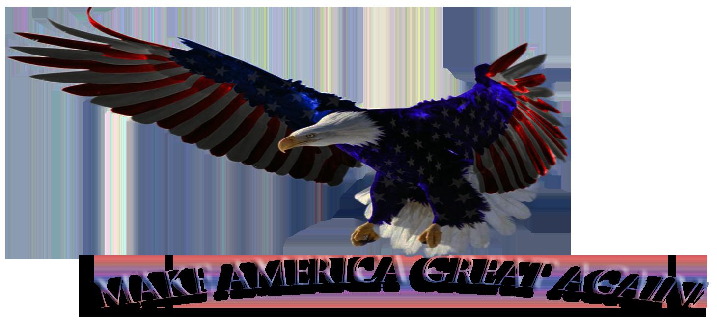 AMERICA GREAT AGAIN-21