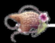 pangolin illustration clip art pangolin