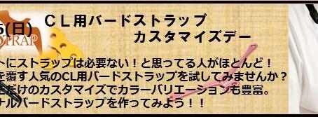 10/16 CL用バードストラップカスタマイズデー