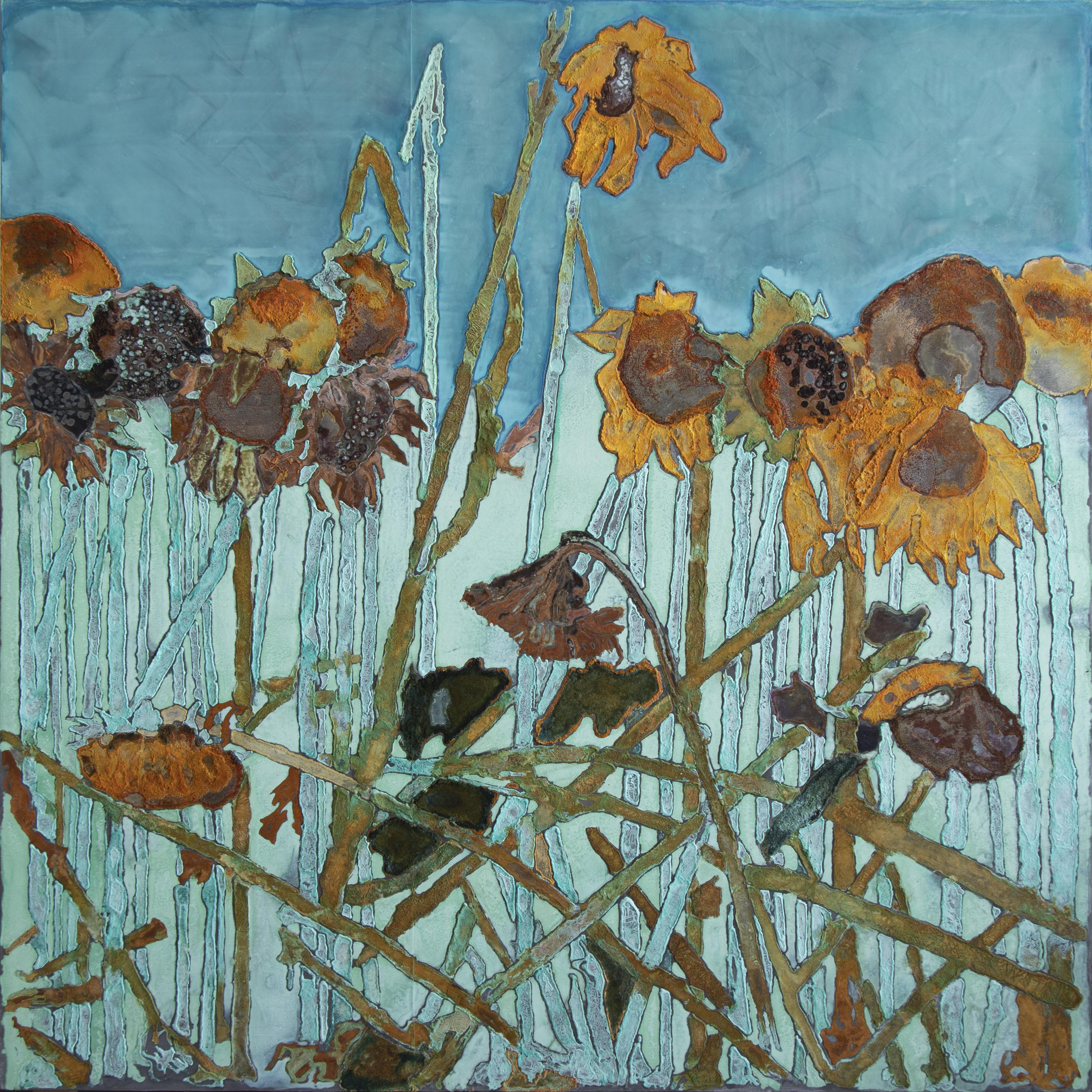 sunflower field II